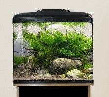 Aqua One AquaVue Aquariums